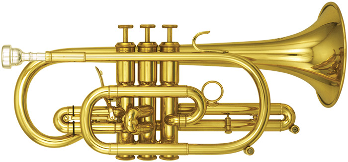 how to clean a cornet